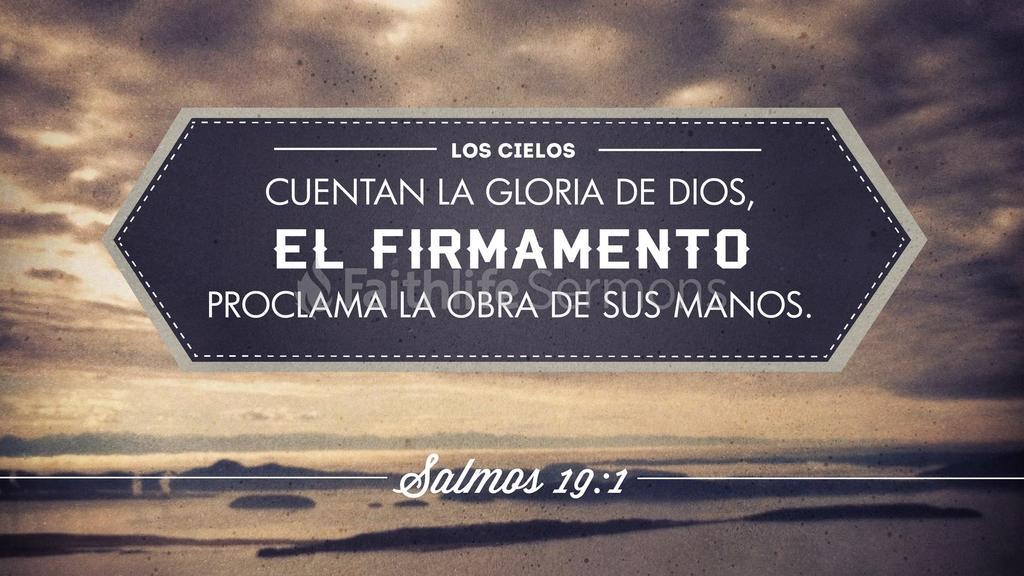 Salmo 19 preview