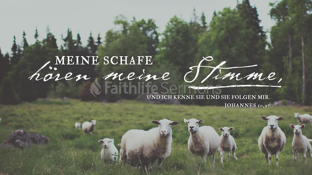 Johannes 10,27 large preview