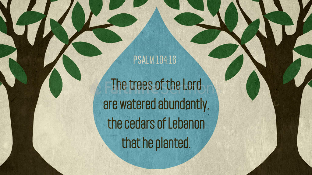 Psalm 104:16 large preview