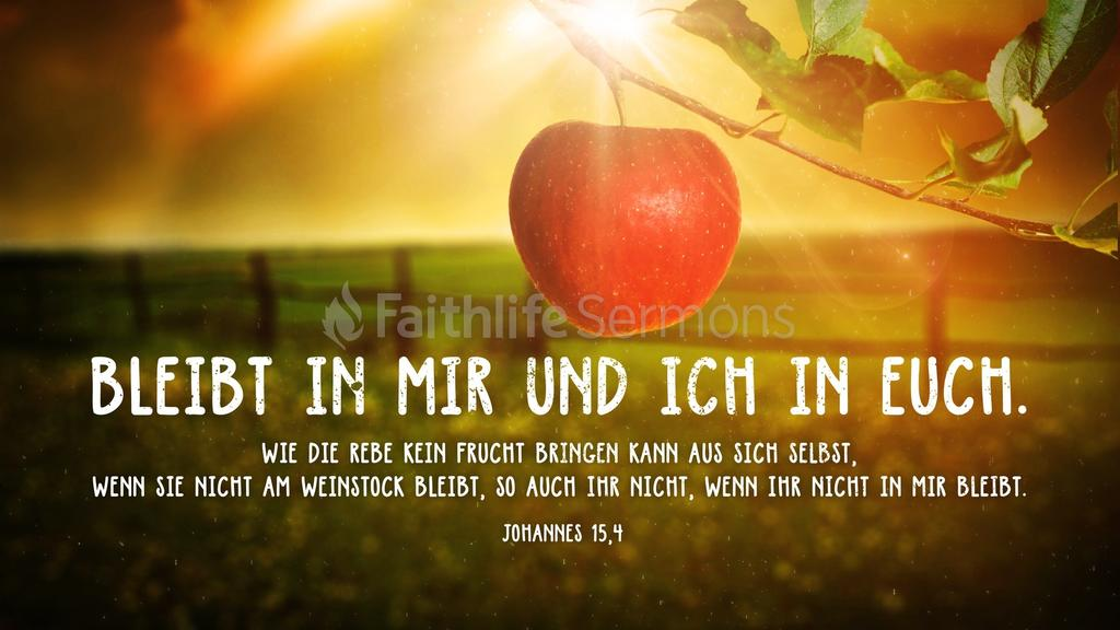 Johannes 15,4 large preview