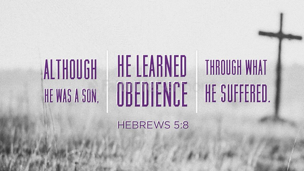 Hebrews 5 8 1920x1080 preview