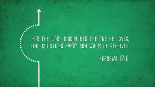 Hebrews 12:6
