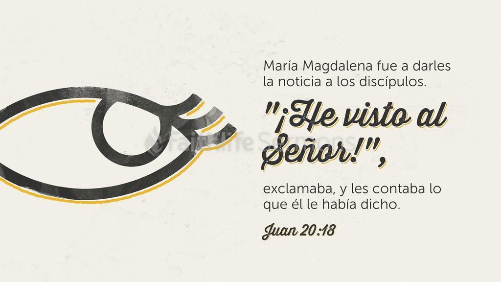 Juan 20.18 large preview