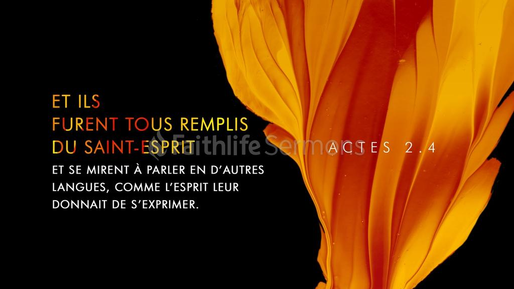 Actes 2.4 large preview