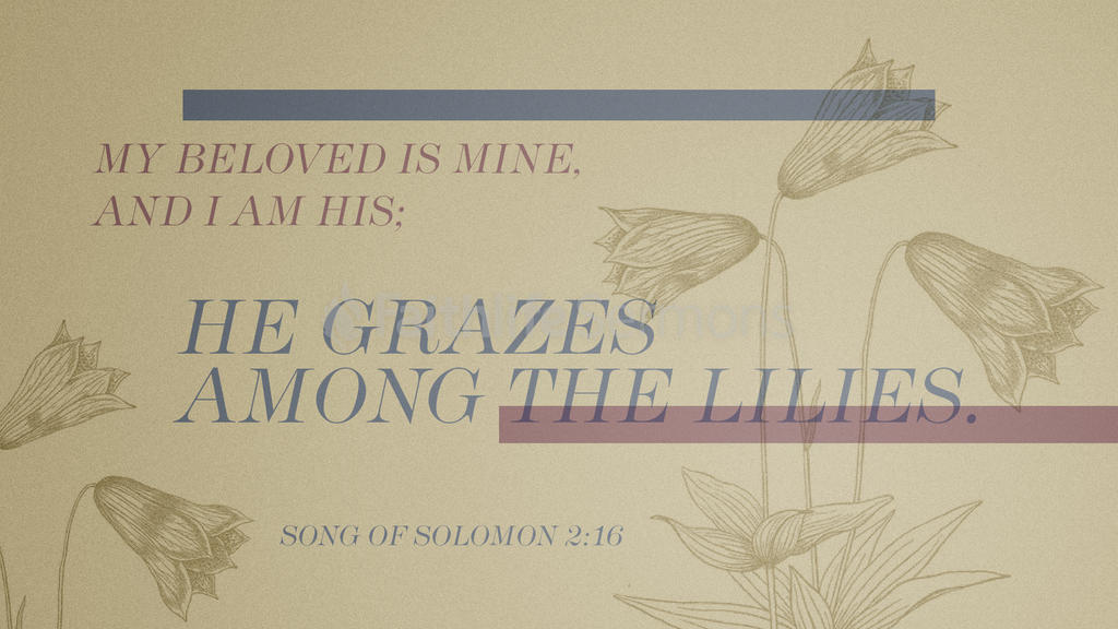 Song of Solomon 2 16 1920x1080 preview