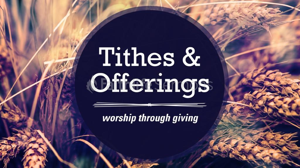 Tithes and Offerings Wheat Field preview