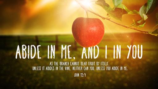 John 15:4 verse of the day image