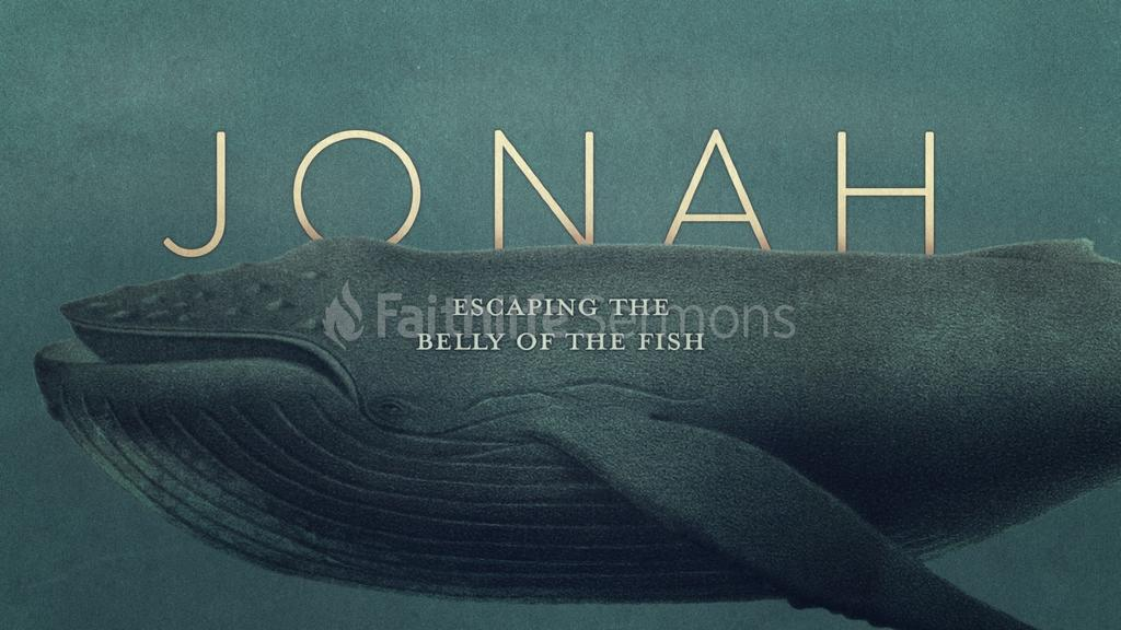 Jonah---Escaping-the-Belly-of-the-Whale large preview
