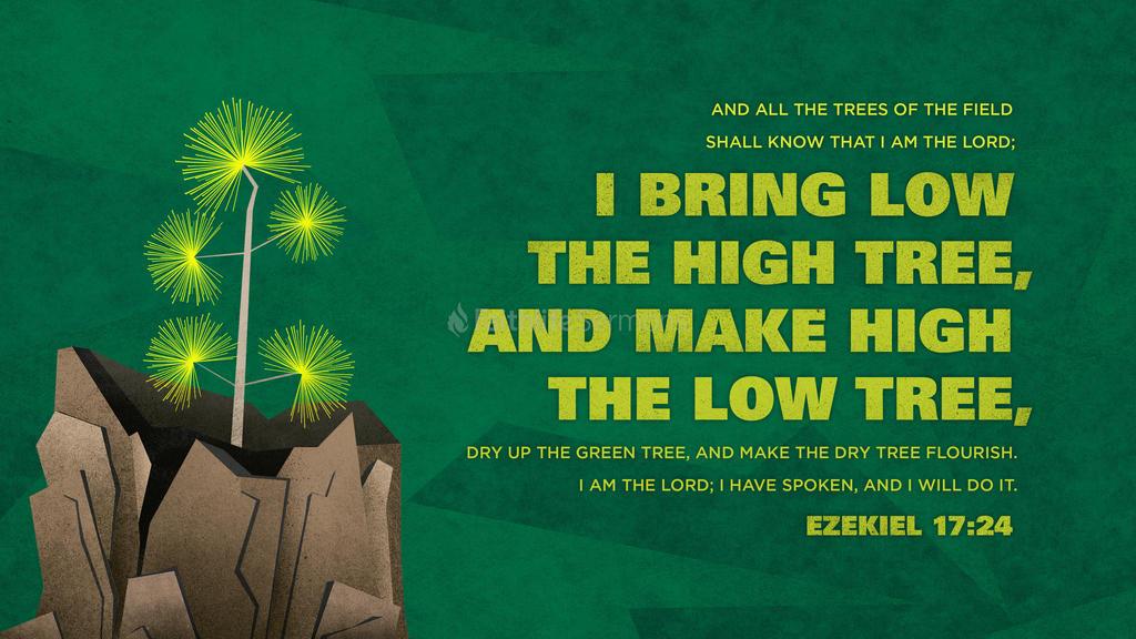 Ezekiel 17:24 large preview