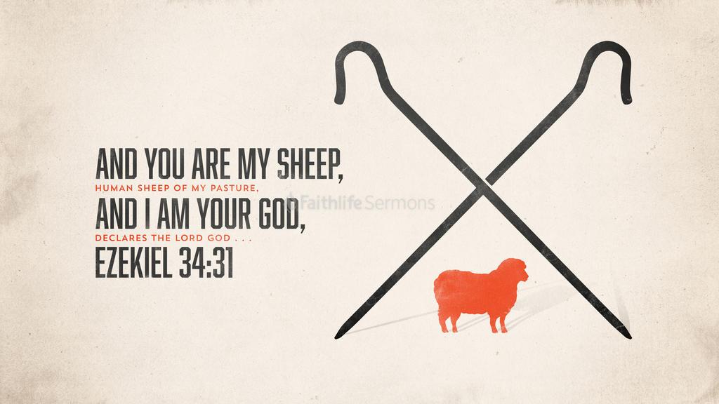 Ezekiel 34:31 large preview