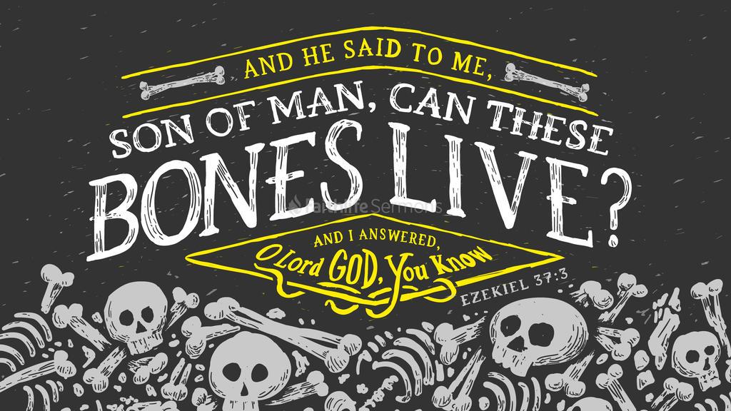 Ezekiel 37:3 large preview