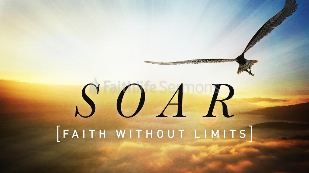 Soar large preview