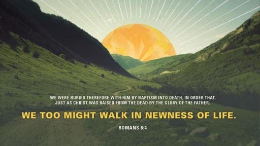 Verse of the day image for Romans 6:4
